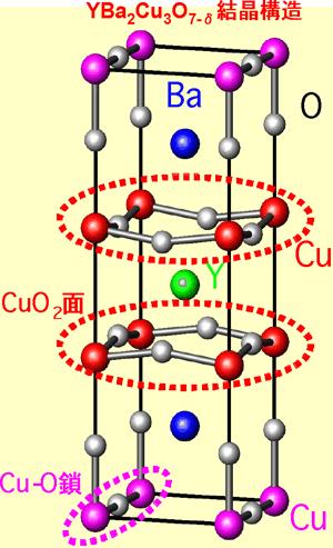 ディラックコーンにおける電子相関効果