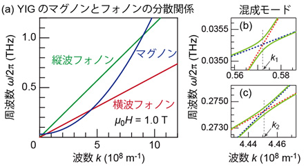 YIGのマグノンとフォノンの分散関係