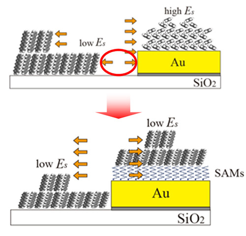 Upper figure: Thin film deposition on a device structure with bare gold electrodes cannot avoid  defect formation around gold (red circle) due to heterogeneous surface energy (Es).   Lower figure: Electrode functionalization by self-assembled monolayers (SAMs)  leads to formation of an ideal organic film structure without forming such defects,  making the Es more uniform.