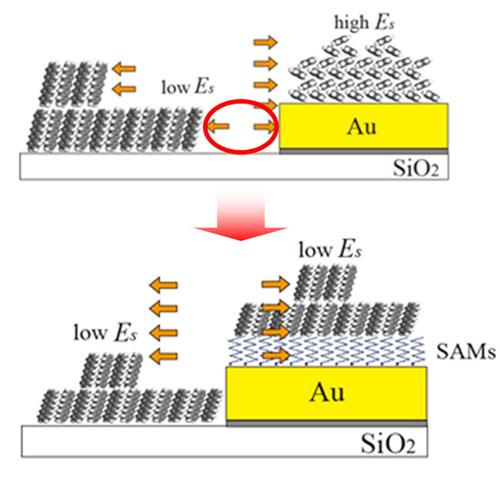 fig. : 化学修飾無しの金電極をもつデバイス構造では表面エネルギー(Es) が不均一なため 薄膜蒸着時に電極近傍に欠陥構造(赤丸部)を残して しまう(上図)が、 自己組織化膜(SAMs)による電極の化学修飾によりEsは均一となり 欠陥のない有機薄膜トランジスタ構造が作製される (下図)。
